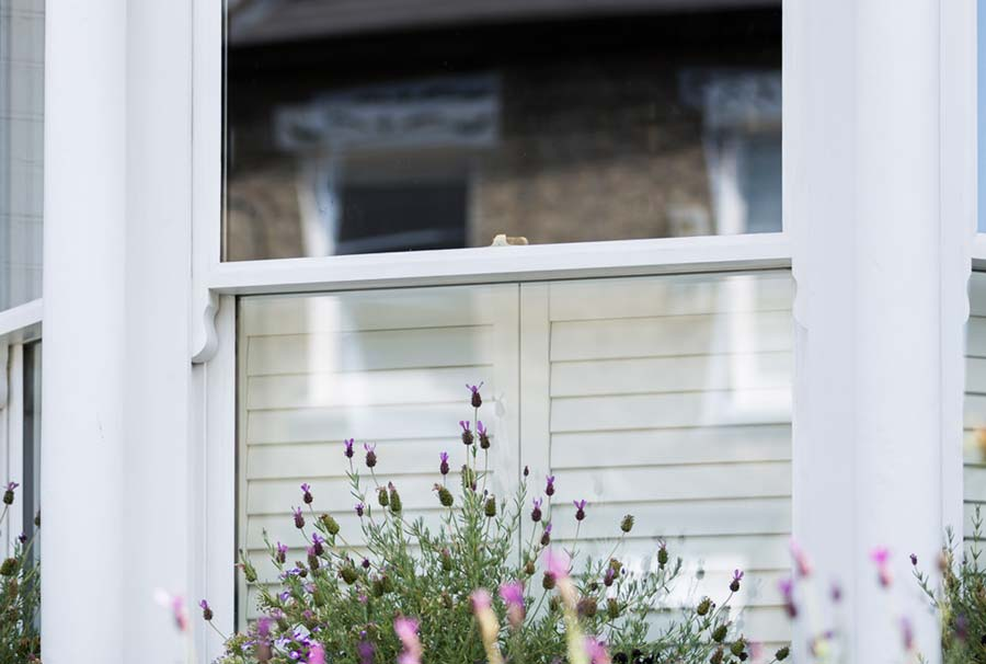 london sash windows